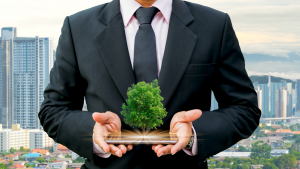 ISO 14001 Environmental Management System QHSE Consulting